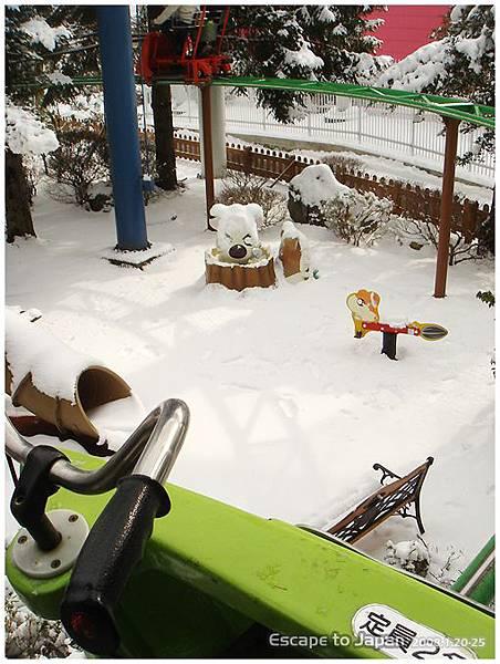 哈姆太郎也積雪
