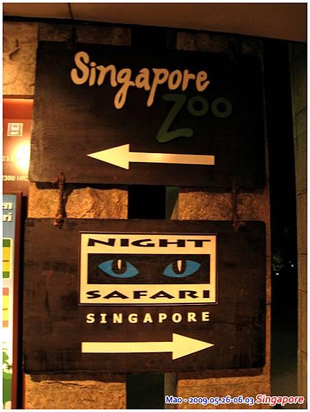 晚上到新加坡夜間動物園