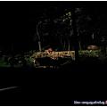 夜間動物園的遊園車很棒 載你去看每個動物!! 獅子大王超帥超氣派的