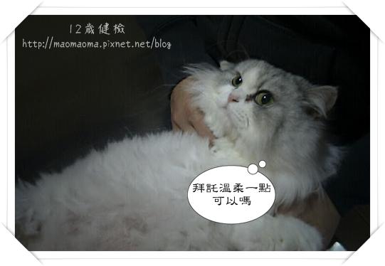 12Y健檢-04.jpg