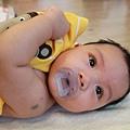 嬰兒按摩二-094