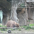 動物園08