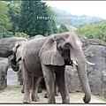 動物園13