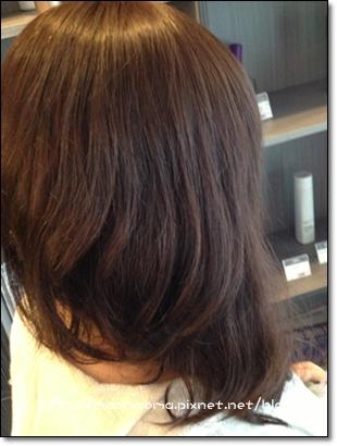 新髮型01