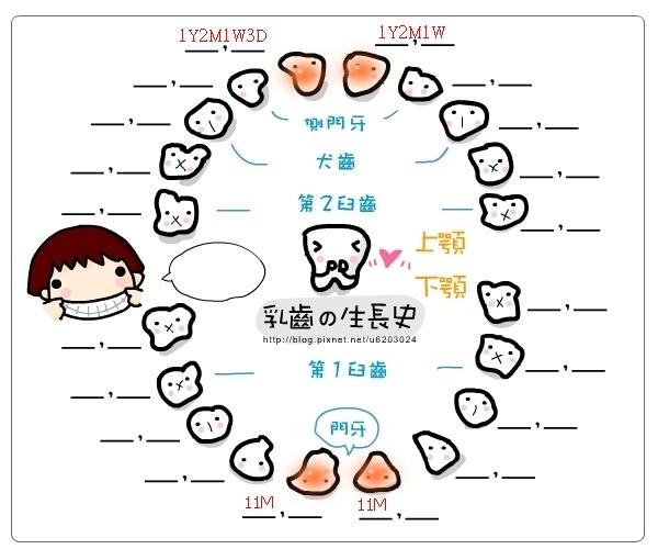 乳牙記錄表-20130611
