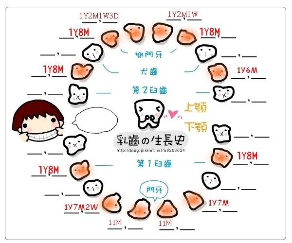 乳牙記錄表-20131129