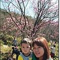 陽明山04.JPG