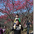 陽明山07.JPG