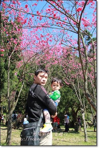 陽明山16.JPG