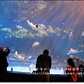 海洋公園48.JPG