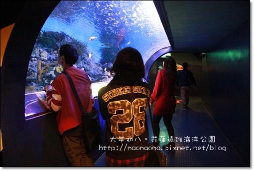 海洋公園47.JPG