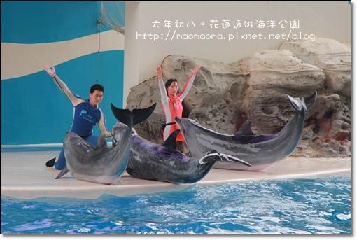 海洋公園15.JPG