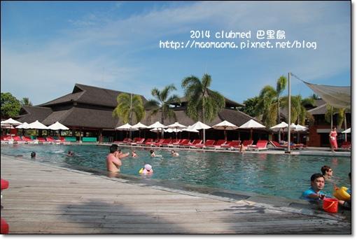巴里島泳池23