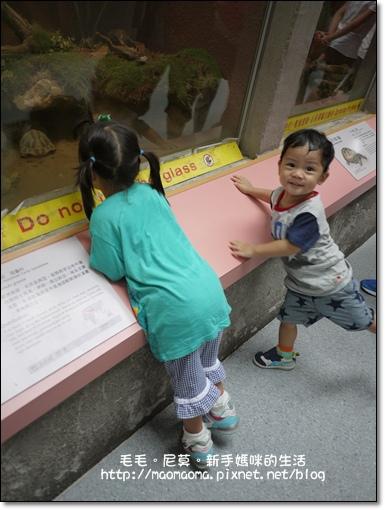 動物園07