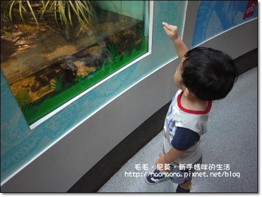 動物園09