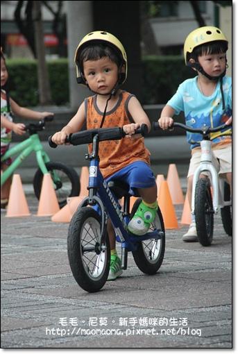 pushbike 02.jpg