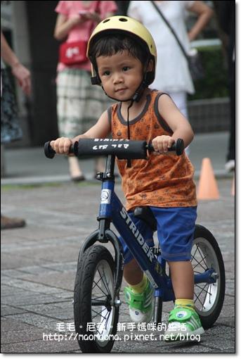 pushbike 01.jpg