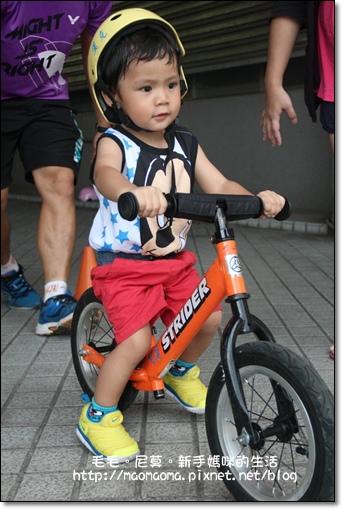 pushbike 04.jpg