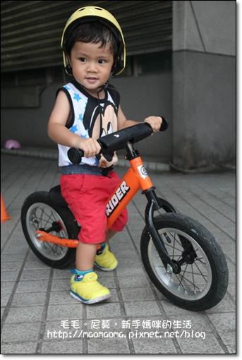 pushbike 06.jpg