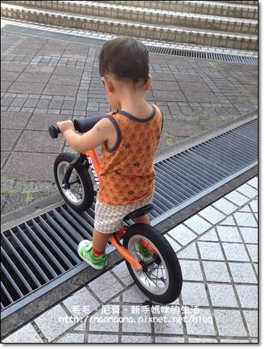 pushbike 12.JPG