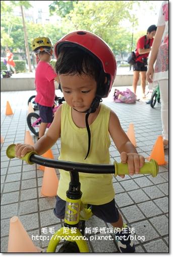 pushbike 33.JPG
