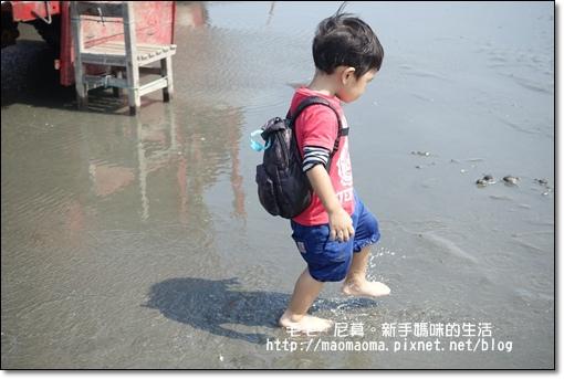 王功漁港16.JPG