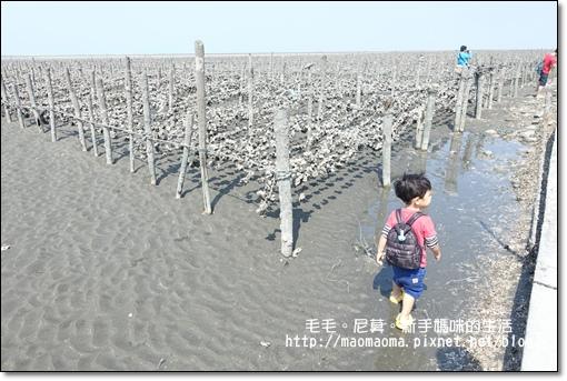 王功漁港18.JPG