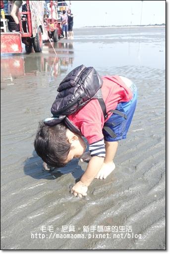 王功漁港14.JPG