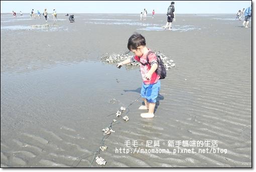 王功漁港12.JPG
