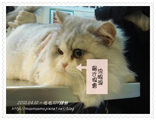 20100410-健檢17.JPG