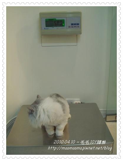 20100410-健檢04.JPG