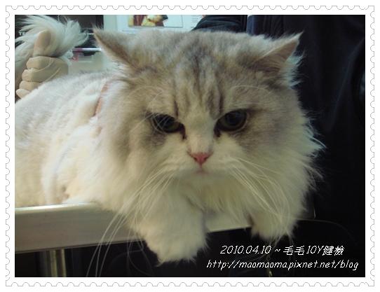 20100410-健檢08.JPG