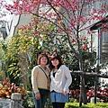 三峽2011.02.27-039.JPG
