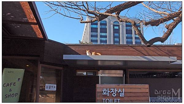 2012_1222to1226_Korea148