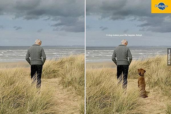一隻狗會讓你更開心 1