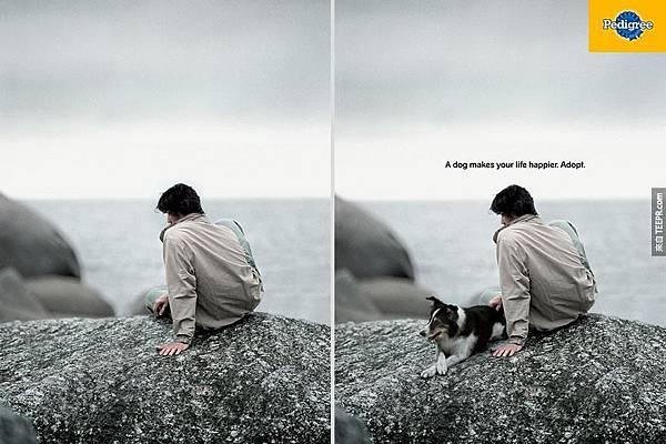 一隻狗會讓你更開心 3
