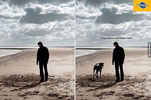 一隻狗會讓你更開心 2