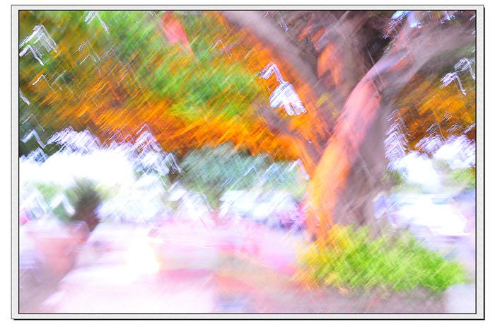 DSC_6151.jpg