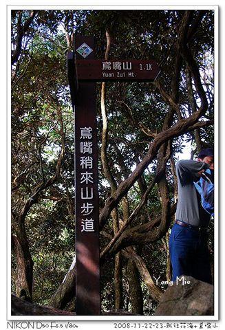 鳶嘴山 (182).jpg