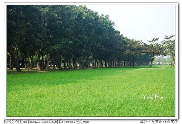 隨處可見的草原.jpg
