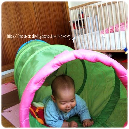 IMG_3686-1