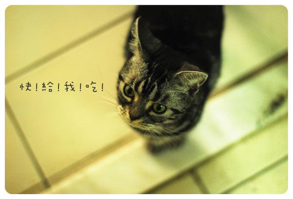 marco-4.jpg