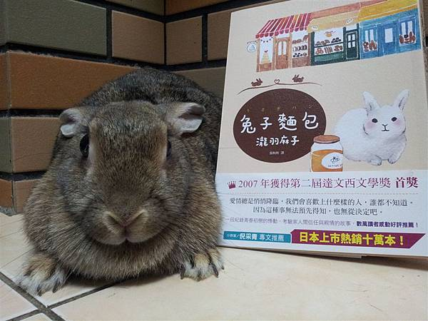 兔子和兔子麵包