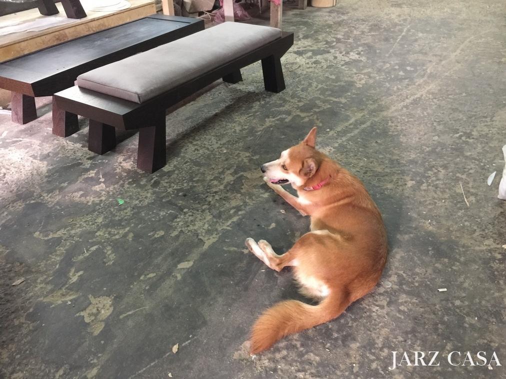 JARZ-傢俬工坊-013雞翅木.JPG