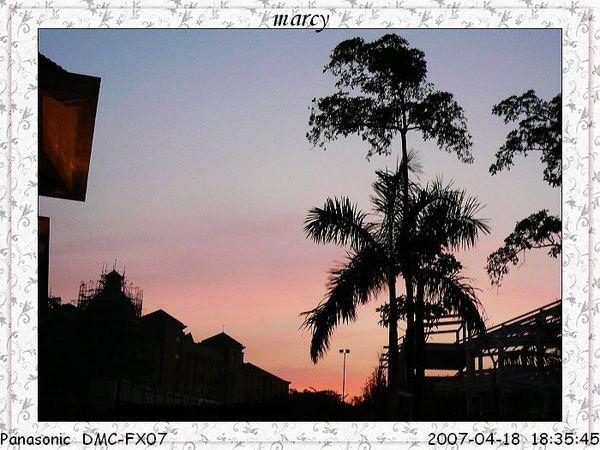 P1030618.jpg