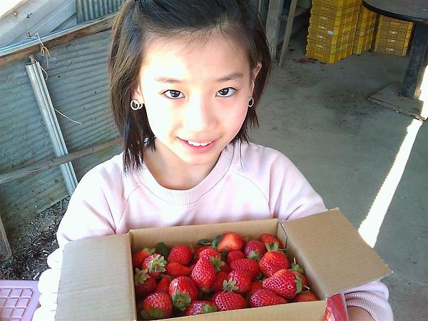 20110206採草莓 (5).jpg