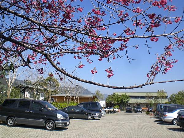 20110206太湖溫泉會館 (7).JPG