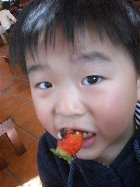 20110207巧克力雲莊 (33).JPG