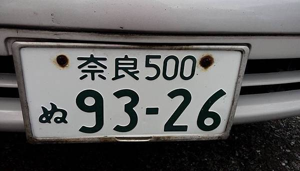 t029.jpg