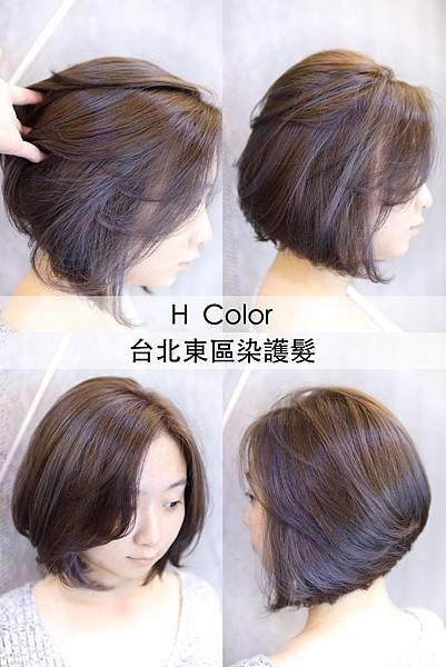 台北東區染髮_H Color9.jpg